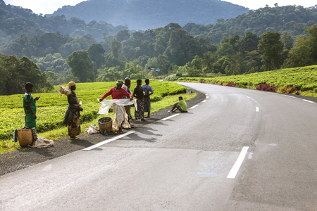 laborers: Kigali, Rwanda, Africa - September 7, 2015: Unidentified people. Asphalt road being accompanied with forest and mountain creates a nice view. The African laborers get ready to work. Editorial