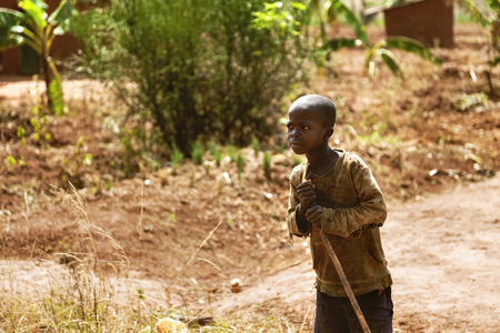 tree works: Kibuye, Rwanda, Africa - September 11, 2015: Unknown child. The farmer African child with his stick look across. He works in banana and coffee fields. There is a banana tree behind him.