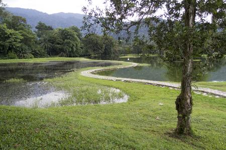 view of a lake garden
