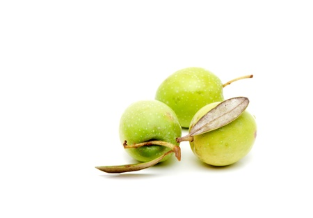 agriculture industry: Green Olives Stock Photo