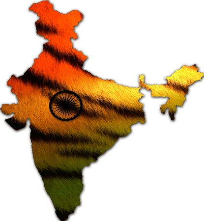 India map in tiger design photo
