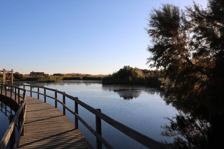 The Azraq Wetland Reserve is a nature reserve located near the town of Azraq in the eastern desert of Jordan