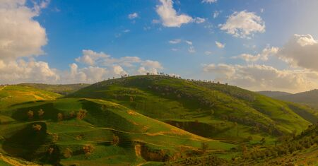 The natural beauty of the spring, with its green plains and terrain ripples. The natural beauty of the spring, with its green plains and terrain ripples. Khirbet Deir al Assal , Irbid- Jordan
