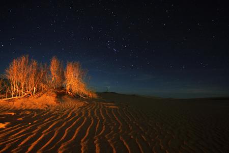 astrophoto: Desert Stock Photo