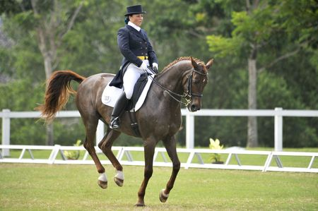 Putrajaya, Malaysia - May 16th, 2010 - A competitor performing in dressage competition during Premier Cup 2010