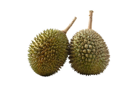 east asia: Durian, the king of fruit of South East Asia on white background Stock Photo