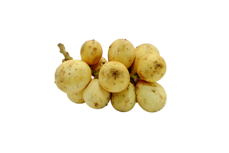 lanzones: Langsat or Lanzones fruit is endemic to Southeast Asia. watery flesh with a sweet flavor and refreshing, but some variety are sour. Stock Photo