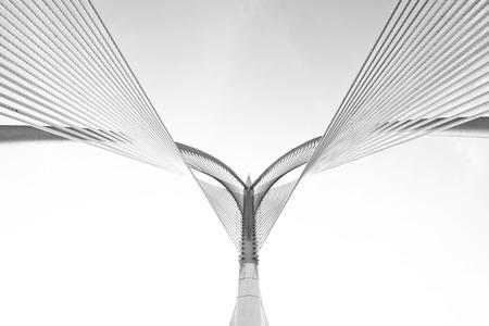black   shadow: Modern bridge architecture at Putrajaya on a black and white. Stock Photo