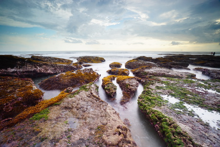 Bali Beach, Indonesia with green seaweeds rocks by the beach