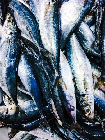Pattern and texture. Fish at market. Raw fish background concept. Livestock and commodity concept. Seafood concept.