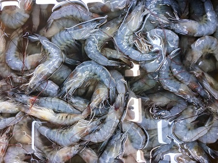 Pattern and texture. Prawn at market. Raw prawn background concept. Seafood, livestock and commodity concept. Stok Fotoğraf