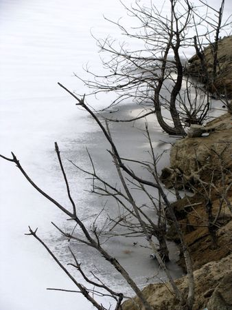 rock and thin branches on a frozen lake Stock Photo