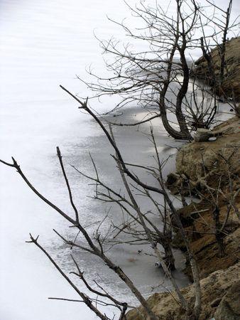 frozen lake: rock en dunne takken op een bevroren meertje Stockfoto