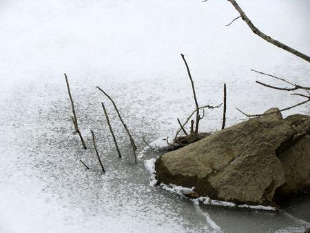 frozen lake: Rock en dunne bijkantoren op een bevroren lake