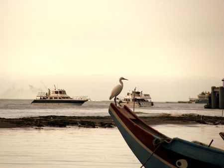 a bird sitting on the edge of the boat Stock Photo