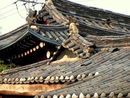 rooted: traditional korean tiled roof of a house in palace