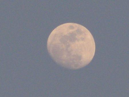 duskiness: full moon in the dark blue sky