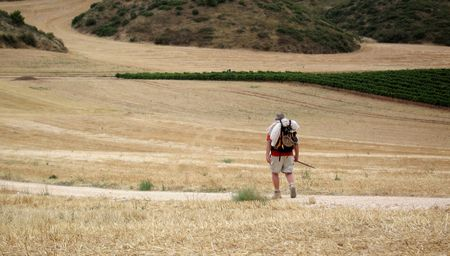 pilgrims: a lonely pilgrim walking through the hay field on the road to santiago