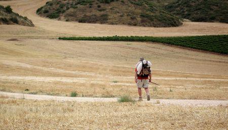 una peregrina solitaria caminar a través del campo de heno en el camino de santiago