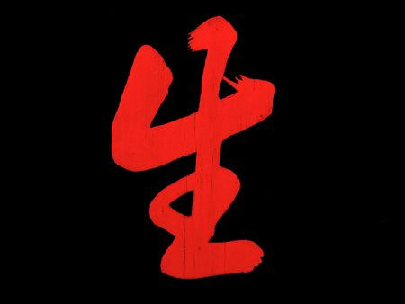 lingua: chinese character meaning to live Stock Photo