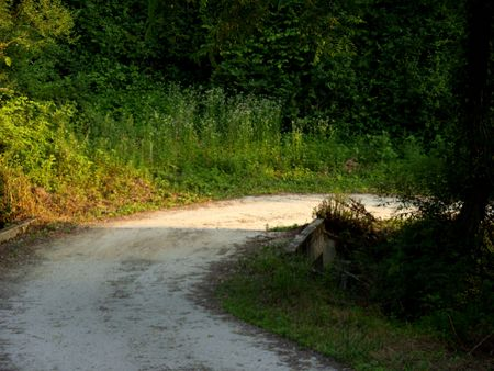a road making curb in the countryside photo