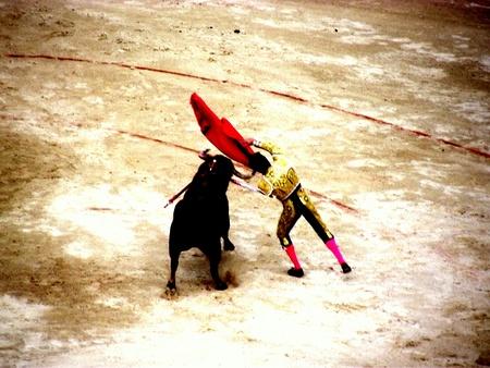 corrida de toros: corrida de toros en nimes en Francia