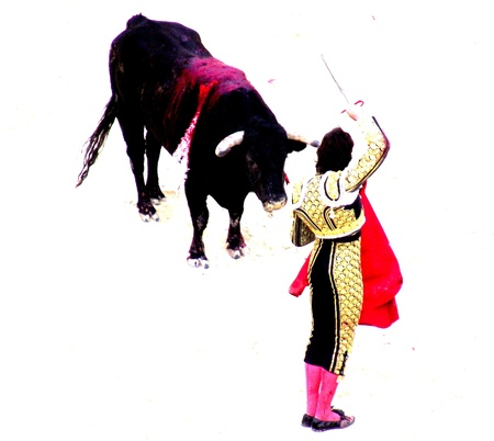 corrida: bullfight in nimes in france