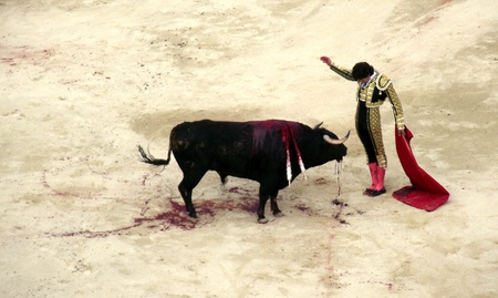bullfight in nimes in france photo