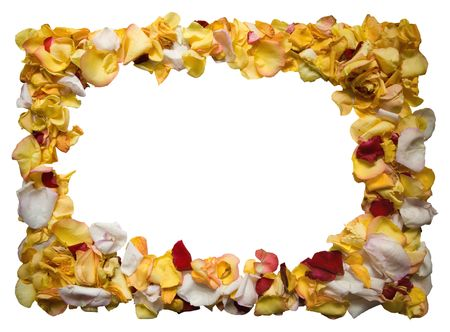 Frame made of rose leafs photo