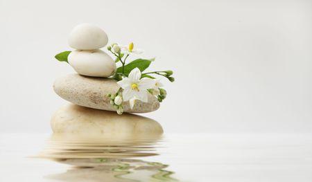 wellness still life pebbles and white jasmine,reflection in water, high key studio shot