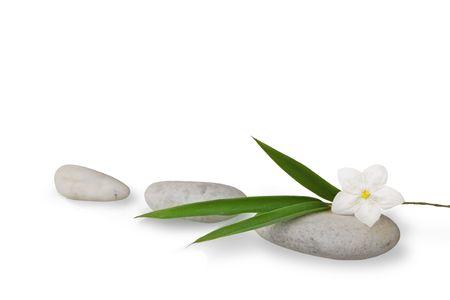 wellness still life, pebbles, blades of bamboo and jasmine flower high key studio shot Stock Photo