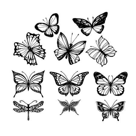 Set of butterflies isolated on white vector illustration Vektoros illusztráció