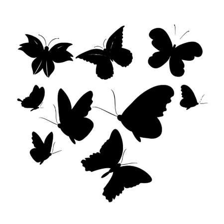 Set of butterflies isolated on white vector illustration Vector Illustration