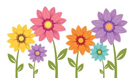 Colorful daisies in yellow, orange, pink purple and turquoise. Vector illustration Ilustración de vector