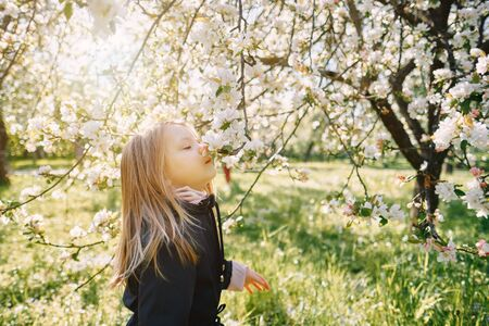 girl sniffing flowers of apple orchard. garden with flowering trees. blue jacket. sunny day Imagens
