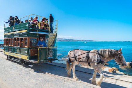 horse drawn: Victor Harbor South Australia  April 4 2015: People are riding the Horse Drawn Tram heading to the Granite Island. Granite Island attracts many tourists all year around. Editorial