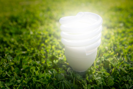 electric energy: Energy saving light bulb on the grass Stock Photo