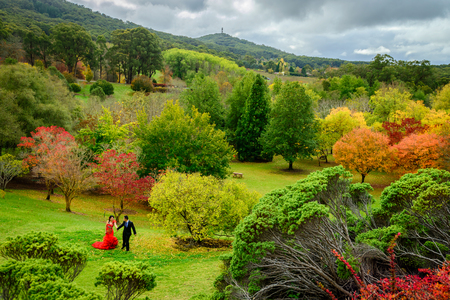 Adelaide, South Australia - April 26, 2015: Wedding couple walking in autumn park among colorful trees