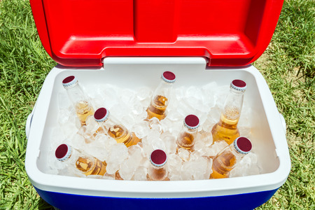 Picnic cooler box with bottles of beer and ice on grass during Australia Day celebration 写真素材