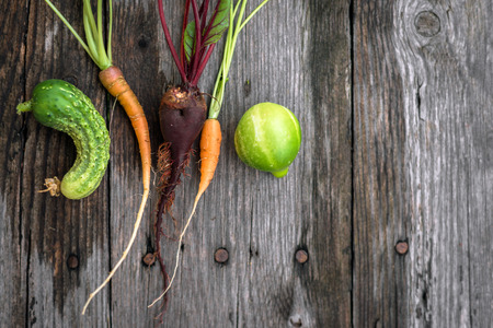 Trendy ugly beetroot, carrot  and cucumber from home garden, pure organic Stock Photo