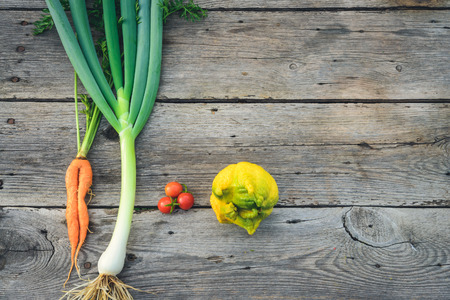 misshapen: Trendy ugly organic carrot, tomatos, ugly lemon and leek from home garden bed on barn wood table, Australian grown. Stock Photo
