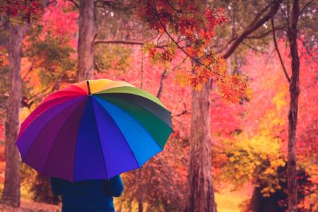sotto la pioggia: Woman standing under rain in autumn park with colorful umbrella Archivio Fotografico
