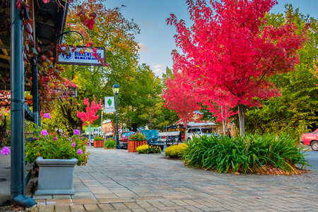 adelaide: Hahndorf, South Australia - April 9, 2017: Main street views of Hahndorf in Adelaide Hills area with shops and cafes during autumn season after rain