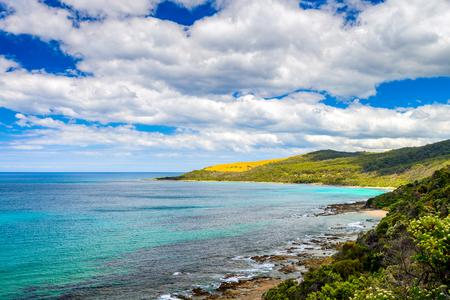 Scenic coastal landscape along the Great Ocean road in Lorne, Victoria, Australia