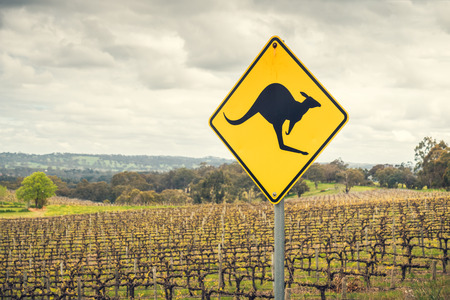 Kangaroo road sign on a side of a road in  Adelaide Hills wine region, South Australia 스톡 콘텐츠