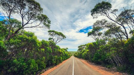 Winding road through Kangaroo Island bushland , South Australia Фото со стока