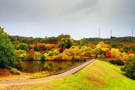 Colourful Australian autumn in Mount Lofty botanic garden, Crafers, South Australia