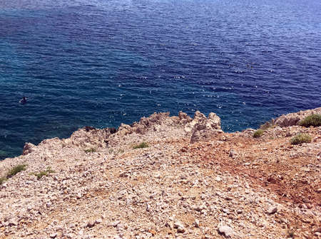 Sea blue, medicinal herbs on the mainland, the island of Krk!