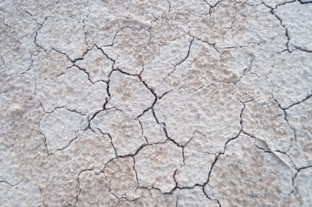 Dry and cracked soil earth background and texture. photo