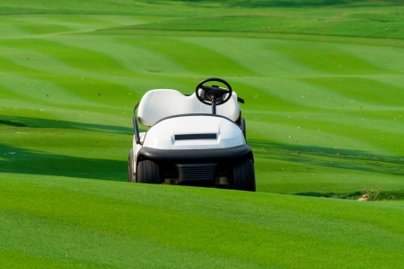 White golf carts parked on the green grass. photo